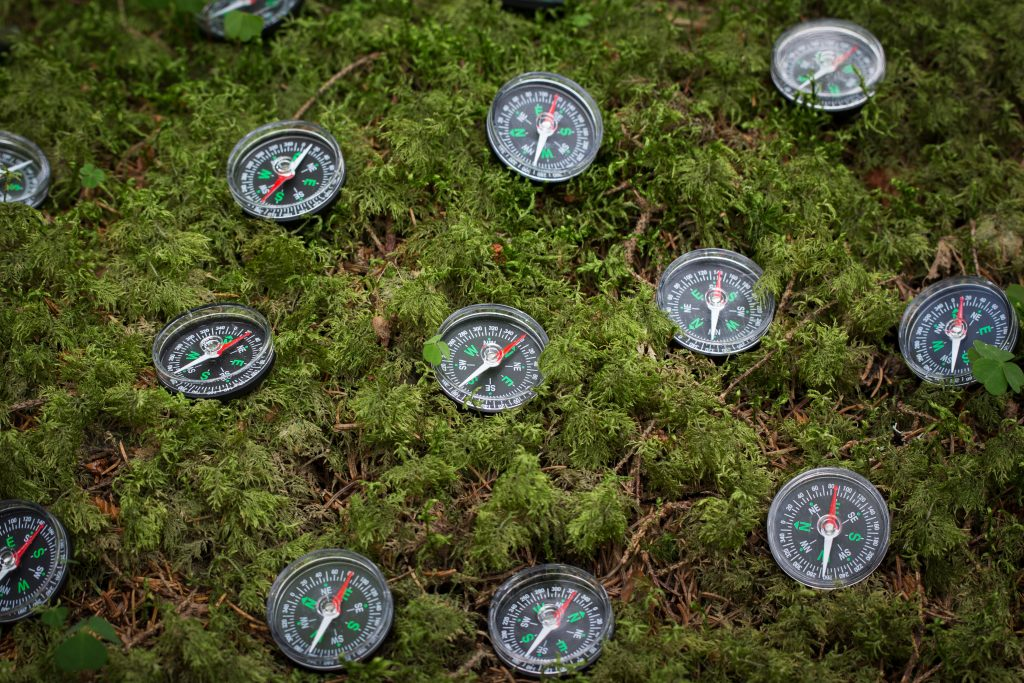 Small black compasses on  moss